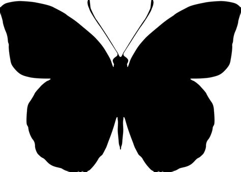butterfly silhouette vector art  vector cdr