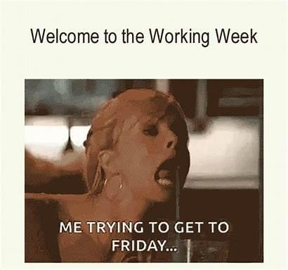 Funny Memes Meme Humorous Friday Week Comical