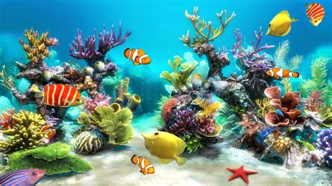 Animated Fish Tank Wallpaper Windows 7 - aquarium live wallpaper windows 10 55 images