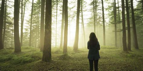 Marcher En Forêt Réduit Le Stress