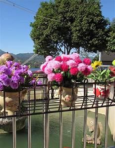 Regal Für Balkon : eisen gel nder blumen topf regale h ngepflanzen regal wand blumenst nder f r balkon farbe ~ Markanthonyermac.com Haus und Dekorationen