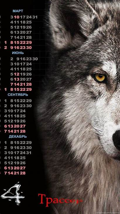 Wolf Lone Quotes Wallpapers Wallpaperplay Quote Mauidining