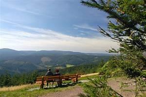 Bilder Vom Wald : fotos vom rennsteig th ringer wald ~ Yasmunasinghe.com Haus und Dekorationen