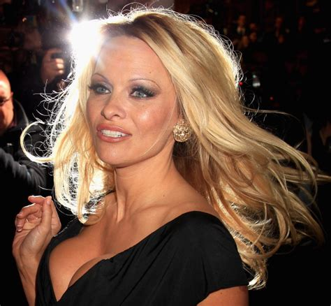 pamela anderson net worth celebrity net worth
