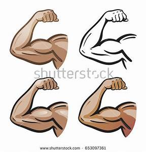 Biceps Stock Images, Royalty-Free Images & Vectors ...