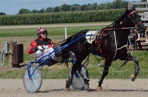 Harness racing includes 11 races Wednesday - Enquirer Democrat