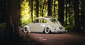 volkswagen beetle sunroof wheels rear trees road forest