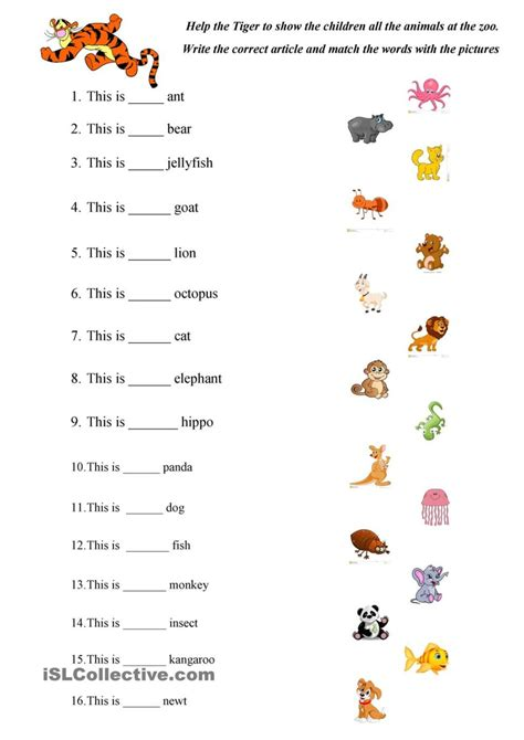 animals worksheets  kindergarten brandonbrice