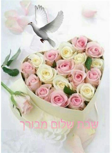 shabbat shalom  birthday flowers beautiful