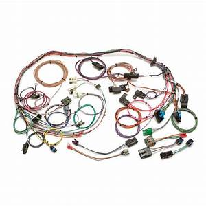 Gm Throttle Body Fuel Injection Harness