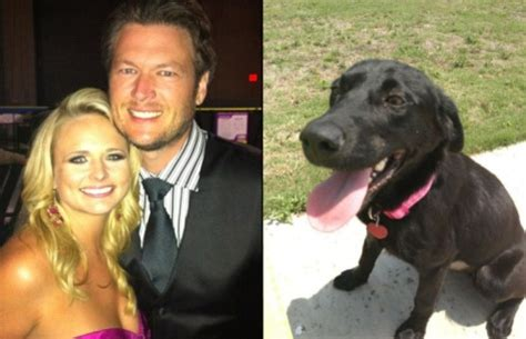 blake shelton dog miranda lambert and blake shelton s dog loretta is