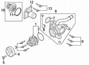 Ford Explorer Gasket  Thermostat  Coolant  Engine