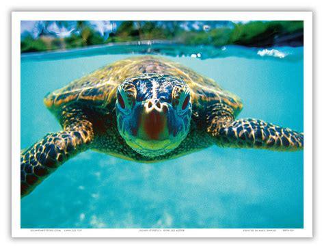 Hawaiian Sea Turtle Honu Underwater Aloha Maui Vintage Art