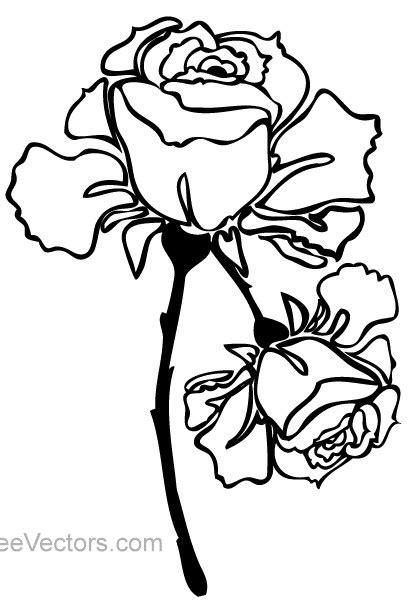Hand Drawn Rose Image vector design free download