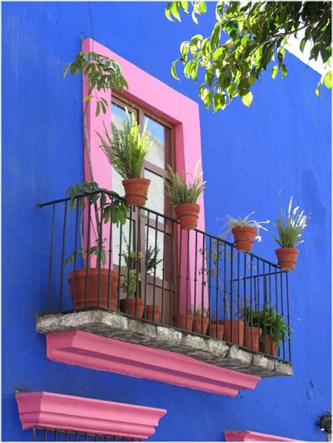 amazing ideas decorate homes exterior window architecture design