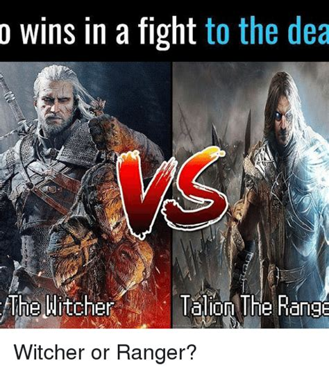Witcher 3 Memes - 25 best memes about witcher witcher memes
