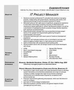32  Manager Resume Templates