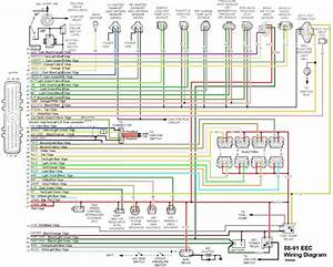 2000 Ford Ranger Factory Wiring Diagram