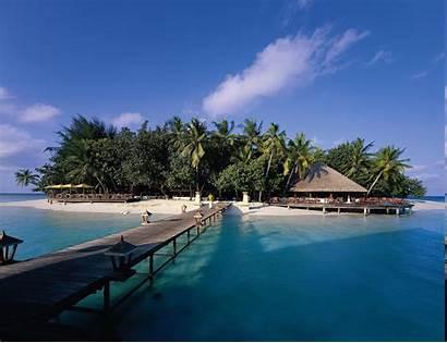 Beach Tropical Sea Palm Trees Landscape Nature