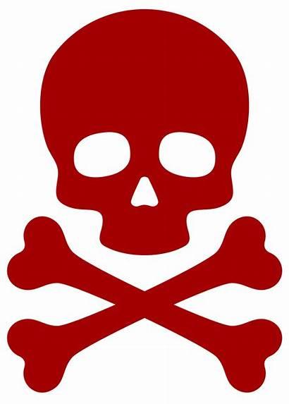 Jolly Roger Skull Crossbones Pirate