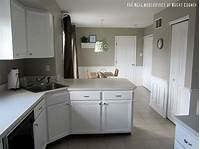 paint for cabinets White Cabinet Reveal! {Kitchen Update} - East Coast Creative Blog