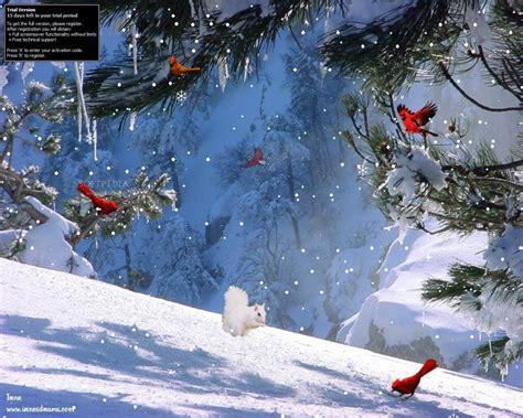 3d Winter Wallpaper by Free 3d Winter Desktop Wallpaper Wallpapersafari