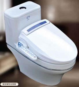 Built In Bidet Toilet by China Toilets With Built In Bidet China Paperless Toilet