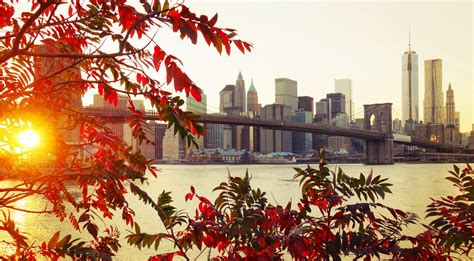 Fall Backgrounds New York by Fall City New York City Sunlight Bridge Leaves