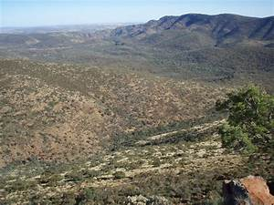 Gammon Ranges National Park SA