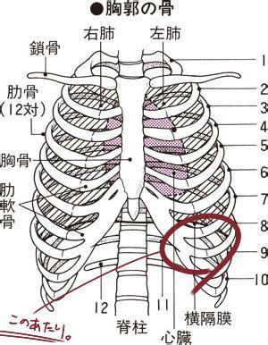 右 脇腹 の 痛み