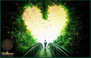 Unconditional Love  A New Paradigm  U22c6 The Wellness Universe