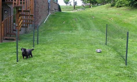 portable dog fences  ultimate buying guide paws