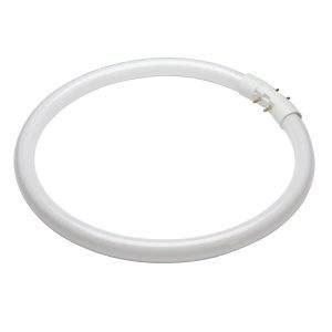 circular fluorescent 22w t5 2gx13 osram coolwhite 840