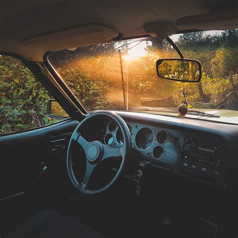 Nv73-car-drive-forest