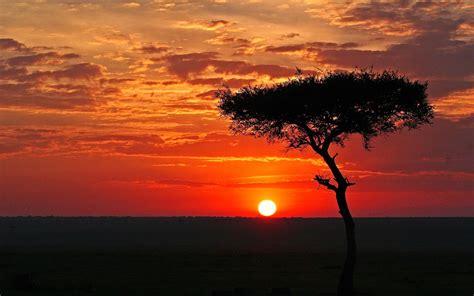 African Landscape Sunset Background Wallpaper  I Hd Images