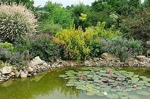 petit bassin de jardin naturel bassin de jardin With comment amenager un petit jardin 7 comment installer un ruisseau ou une cascade au bassin
