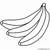 Coloring Bunch Banana Bananas Fruits Drawing Plantain Vegetables Clipartmag Getdrawings Activity sketch template