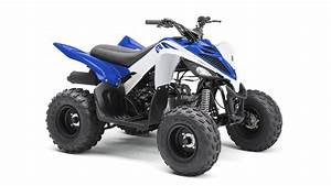 Quad 125 Yamaha : yfm90r 2017 quad yamaha motor france ~ Nature-et-papiers.com Idées de Décoration