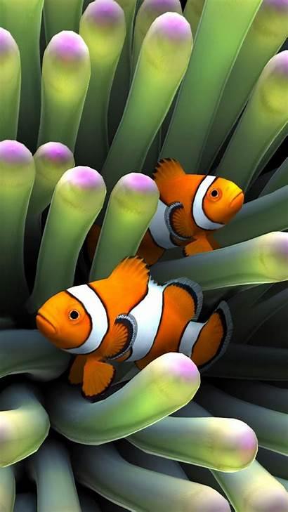 Iphone Fish Clown Aquarium Sim Clownfish Ocean