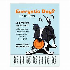 dog walker walking personalized tear sheet custom flyer With dog walking flyer template free