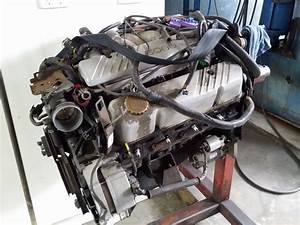 Holden V8 Project Engine