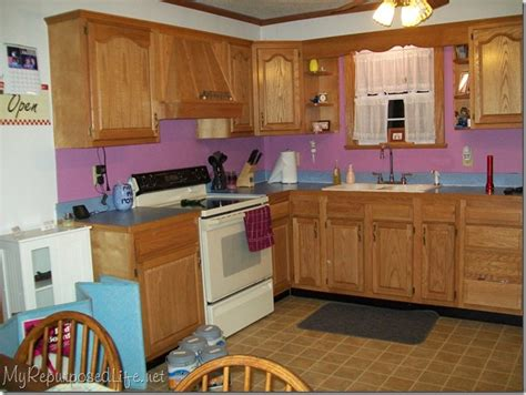 how to paint oak cabinets how i painted my oak cabinets hometalk