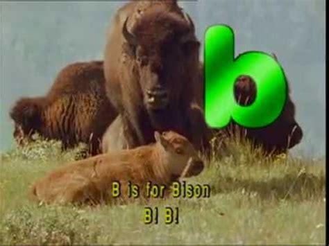 animal alphabet doovi