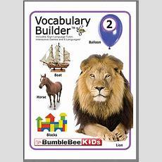 Vocabulary Builder 2  Bumblebee Kids