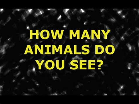 How Many Animals Do You See? Youtube