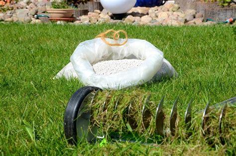 moos steinen entfernen wie k 246 nnen sie moos dauerhaft entfernen im rasen und auf der terrasse garten
