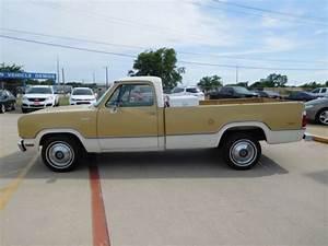 Classic 1976 Dodge D