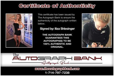 Iliza Shlesinger Net Worth