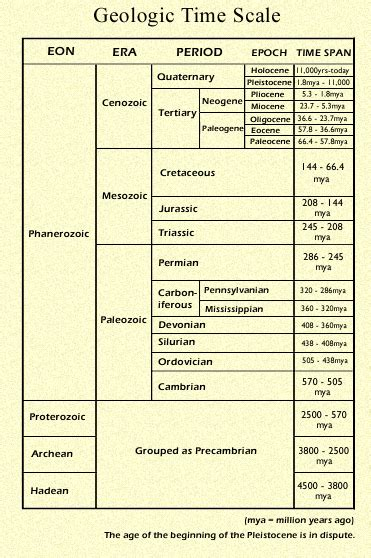 Geologic Time Scale Worksheet Homeschooldressage