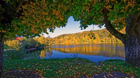 Autumn 4k Uhd Wallpapers by Wallpaper Germany Ulmen In The Autumn Trees River
